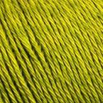 Gros plan sur le fil Allino de BC Garn, coloris 20 (vert anis)
