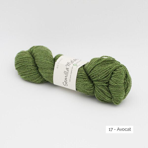 Un écheveau de Semilla Melange de BC Garn coloris Avocat (vert mousse chiné clair et foncé))