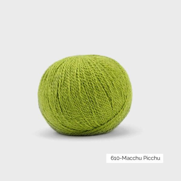Une pelote de Balayage de Pascuali dans le coloris Macchu Picchu (vert prairie)