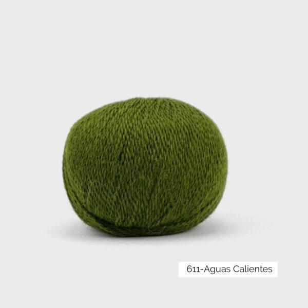 Une pelote de Balayage de Pascuali dans le coloris Aguas Calientes (vert mousse)