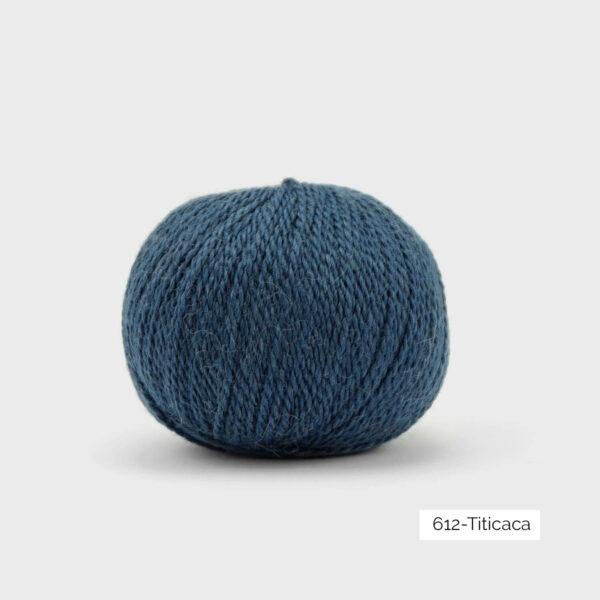 Une pelote de Balayage de Pascuali dans le coloris Titicaca (bleu franc)