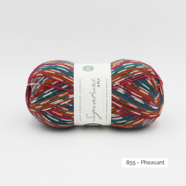 Une pelote de Signature 4ply de West Yorkshire Spinners coloris Pheasant