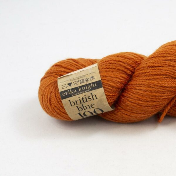 Zoom on a skein of British Blue Wool by Erika Knight in the Tulip colorway