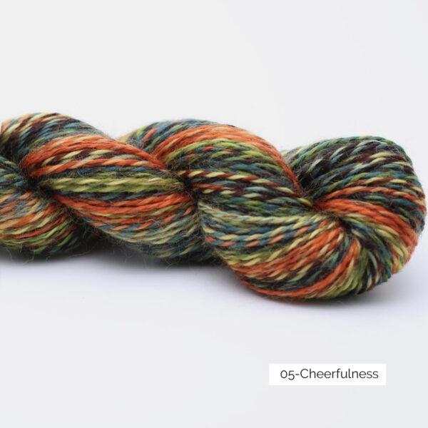Présentation d'un écheveau de laine In the Mood de Kremke Soul Wool coloris Cheerfulness