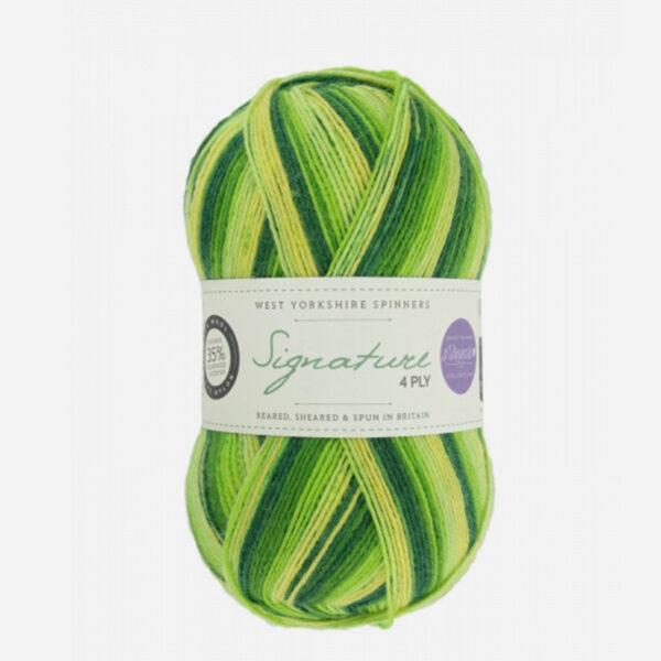 Une pelote de Signature 4ply de West Yorkshire Spinners (WYS) de la collection Seasons, coloris Spring Green