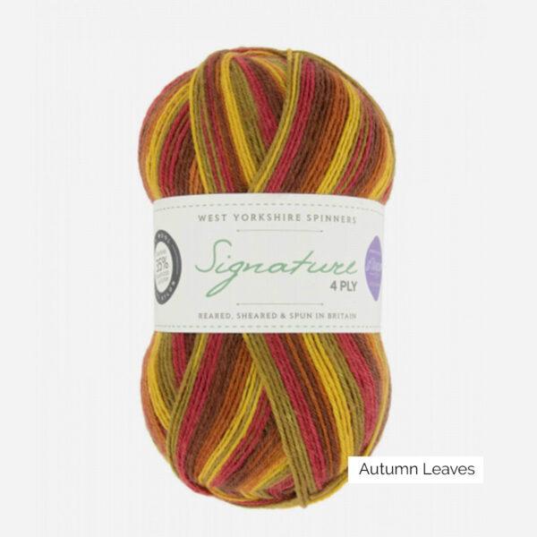 Une pelote de Signature 4ply de West Yorkshire Spinners (WYS) de la collection Seasons, coloris Autumn Leaves