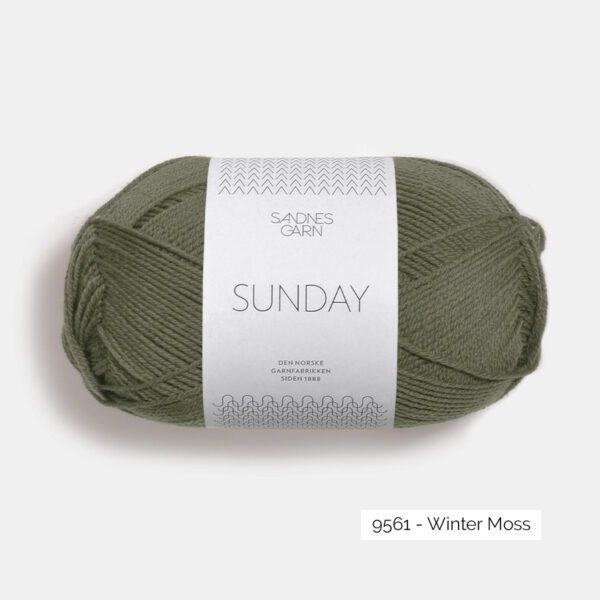 Une pelote de Sunday de Sandnes Garn coloris Winter Moss